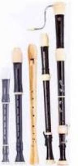<h5>Blockflöte</h5><p>Holzblasinstrument</p>