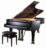 <h5>Klavier</h5><p>Tasteninstrument</p>