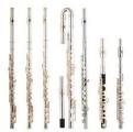 <h5>Querflöte</h5><p>Holzblasinstrument</p>